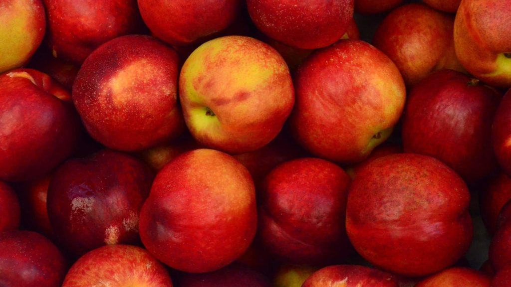 bunches of red apples